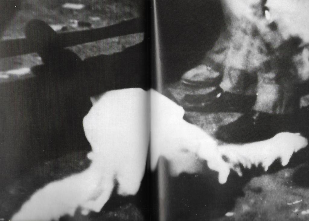 Μέρες Πολυτεχνείου, φωτογραφίες που προέρχονται από τη γαλλική εφημερίδα Φρανς Σουάρ των ημερών. και -με επιφύλαξη- ίσως είναι η πρώτη φορά που βλέπουμε βαριά τραυματισμένο ή ίσως 'νεκρό του Πολυτεχνείου'. Ο άνθρωπος στο έδαφος κείται μπροστά από στρατιωτικά άρβυλα, κατά πάσα πιθανότητα.