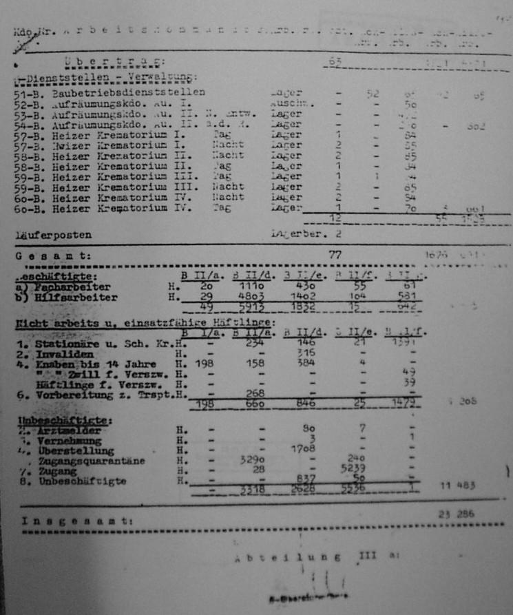 Η δύναμη του Σοντερκομμάντο στις 07/10/1944. «Of the 663 who serviced the five crematoria, at least one-third were Greek Jews. A number of them are known by name, and in fact eleven of them survived not only the revolt but even Auschwitz itself».