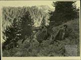 1949-xx-xx - ΔΣΕ Εμφύλιος Πόλεμος-11 - Αρχειολόγιο ΑΣΚΙ - Φ.Α.ΔΣΕ.23.00016