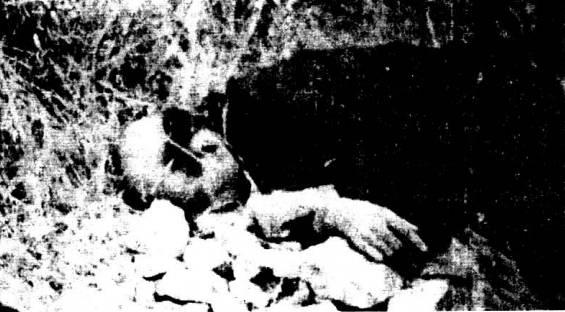 Ο Πλουμπίδης, εκτελεσμένος, με τις χειροπέδες ακόμα στα χέρια του. Οταν, δηλαδή «έτρωγε τα δολλάρια της προδοσίας στην Αμερική»