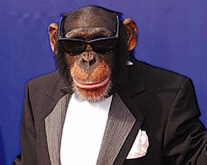 Μαϊμού με κουστούμι και γυαλιά