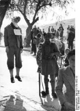 1943-xx-xx - Αμπελόκηποι - Απαγχονισμένος + Ταγματασφαλίτης - Erhangter Mann mit Schild um den Hals an Baum auf einem Platz in einer Ortschaft, daneben griechischer Soldat - athene-52ef9lp5vnk1dmkm3gdh_layout
