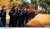 Σερβική Εθελοντική Φρουρά ή αλλιώς οι Τίγρεις του Αρκάν, στο στρατόπεδο σε παράταξη.