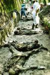 Αλλη μια συγκλονιστική φωτογραφία, συνέχεια της προηγούμενης. Τα ευρήματα της ανασκαφής. Από την ομάδα του Σκοτσέζου ιατροδικαστή Robert McNeil, Μάιος του 1996.
