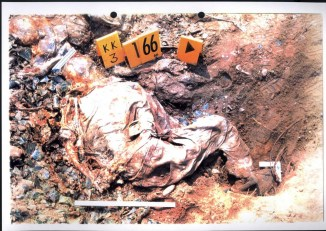 Exhibit P128-24 from Krstic trial - Srebrenica victims had their hands tied before executions