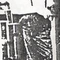 1983-xx-xx - Ανώνυμος Skinhead + Oi με τιράντες - hellasskins1983