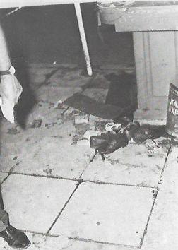 Δεκάδες μονά παπούτσια: Δολοφονία Σωτήρη Πέτρουλα, 21/07/1965: Σταδίου.